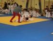 judo-17-11-13-028